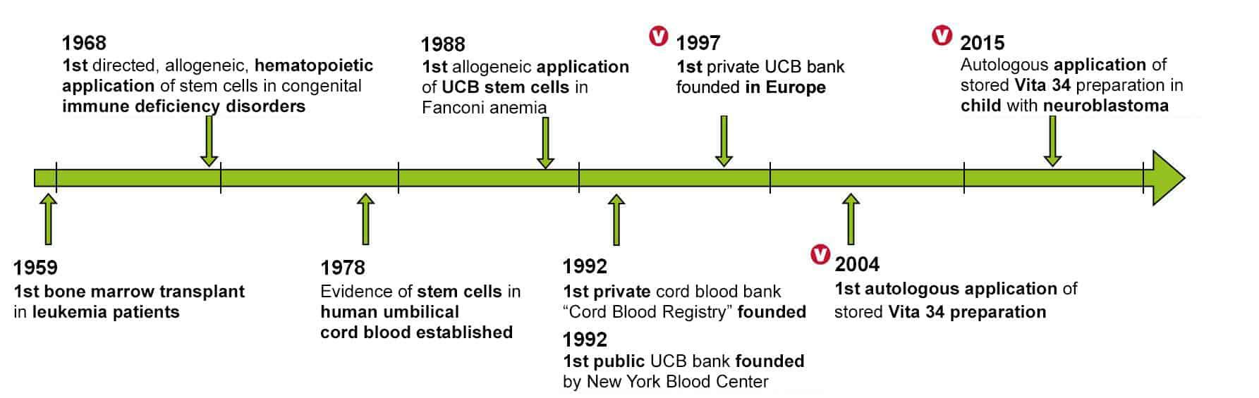 History of stem cells   Vita34